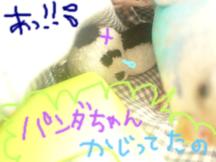 Photo_103