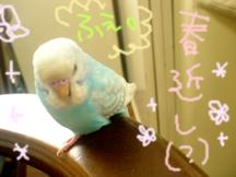Photo_107