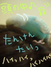 Photo_134